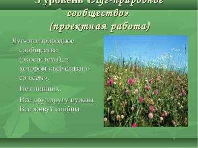 3 уровень «Луг-природное сообщество» (проектная работа) Луг-это природное соо...