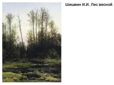 Шишкин И.И. Лес весной
