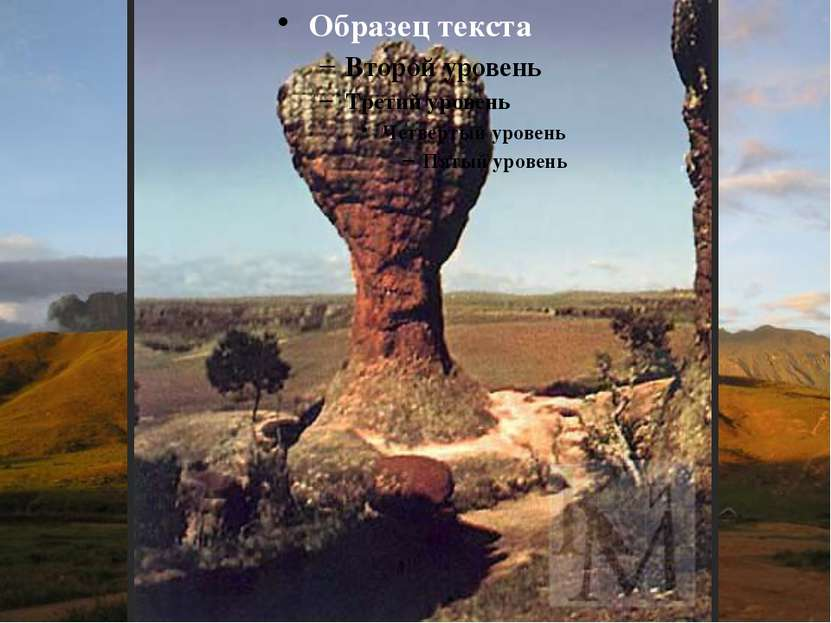 Гвианское плоскогорье - выступ докембрийского фундамента в северной части Южн...