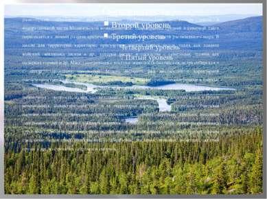 На территорииПаанаярвивстречаются северные, южные и восточные виды растени...