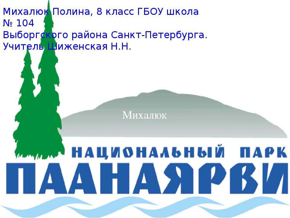 Михалюк Михалюк Полина, 8 класс ГБОУ школа № 104 Выборгского района Санкт-Пет...