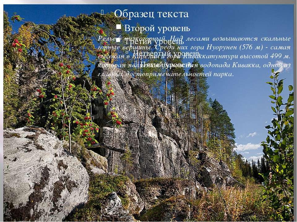 Рельеф низкогорный. Над лесами возвышаются скальные горные вершины. Среди них...