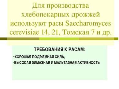 Для производства хлебопекарных дрожжей используют расы Saccharomyces cerevisi...