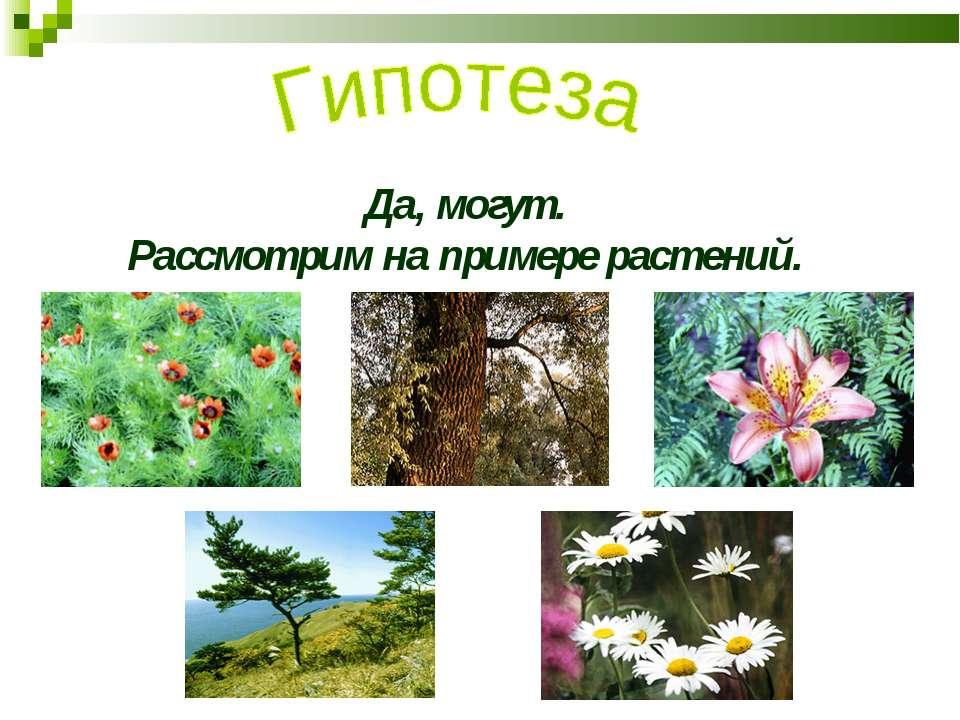 Да, могут. Рассмотрим на примере растений.