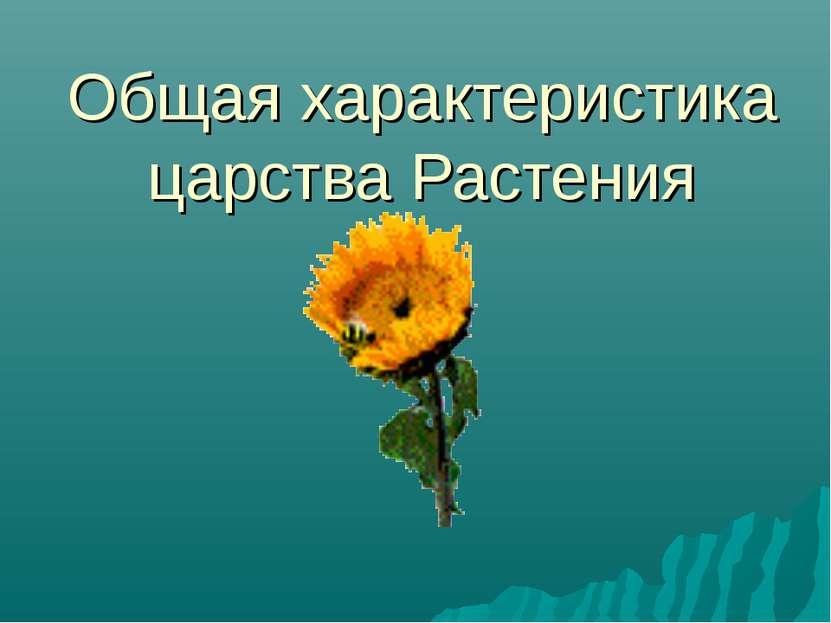 Общая характеристика царства Растения