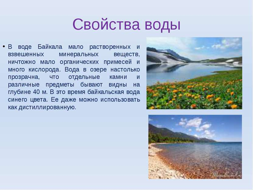 Свойства воды В воде Байкала мало растворенных и взвешенных минеральных вещес...