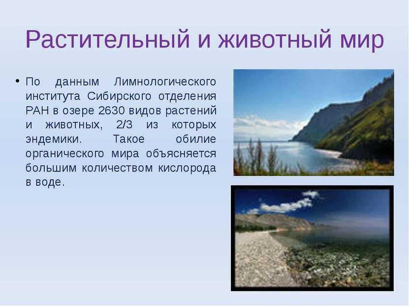 Растительный и животный мир По данным Лимнологического института Сибирского о...