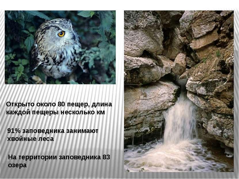 Открыто около 80 пещер, длина каждой пещеры несколько км 91% заповедника зани...