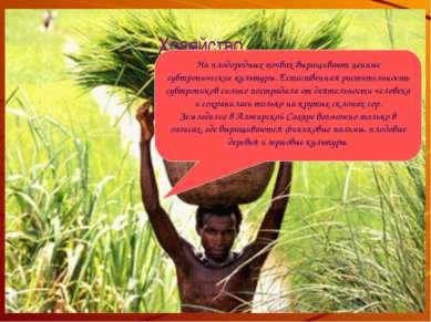 Хозяйство На плодородных почвах выращивают ценные субтропические культуры. Ес...