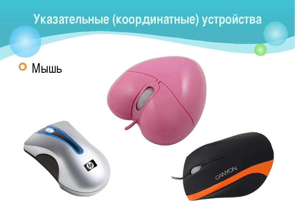 Мышь Указательные (координатные) устройства