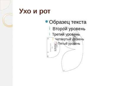 Ухо и рот