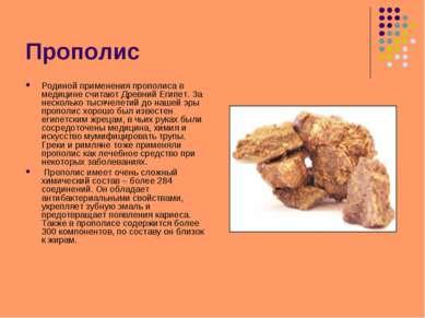 Прополис Родиной применения прополиса в медицине считают Древний Египет. За н...
