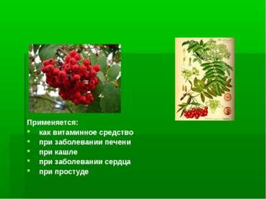 Применяется: как витаминное средство при заболевании печени при кашле при заб...