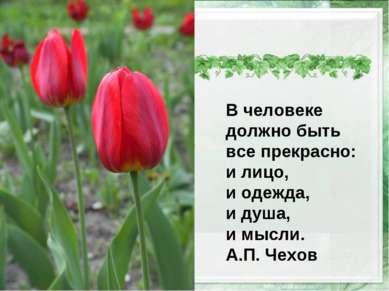 В человеке должно быть все прекрасно: и лицо, и одежда, и душа, и мысли. А.П....