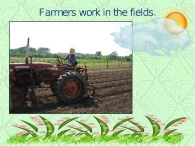 Farmers work in the fields.