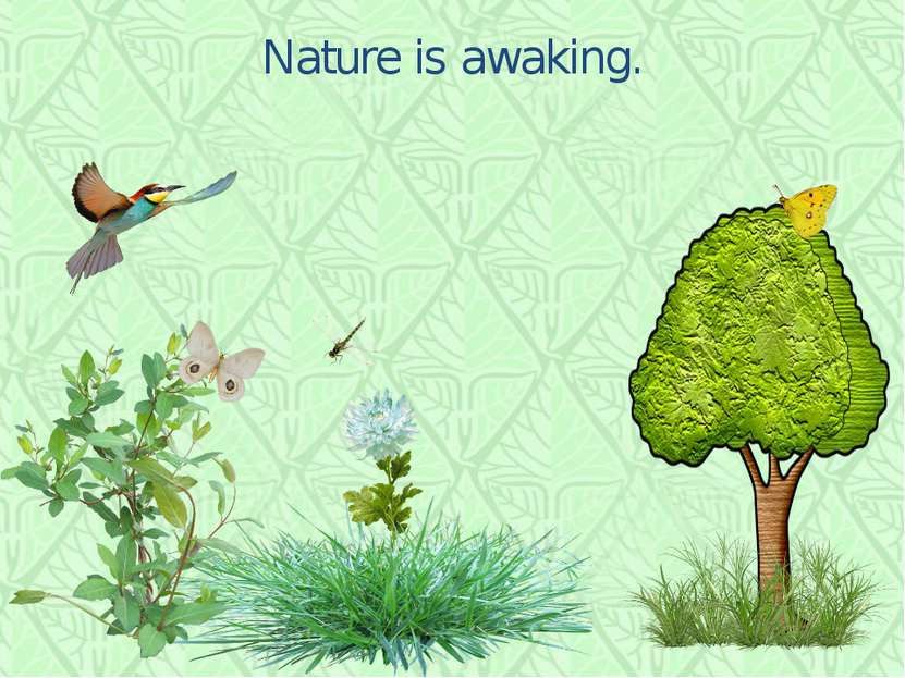 Nature is awaking.