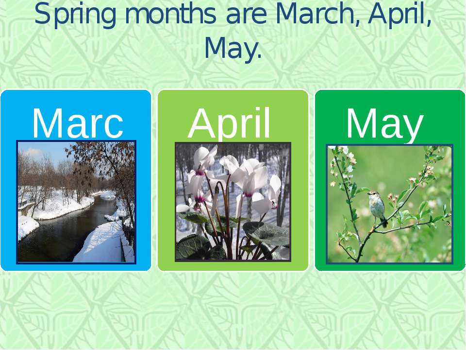 Spring months are March, April, May.