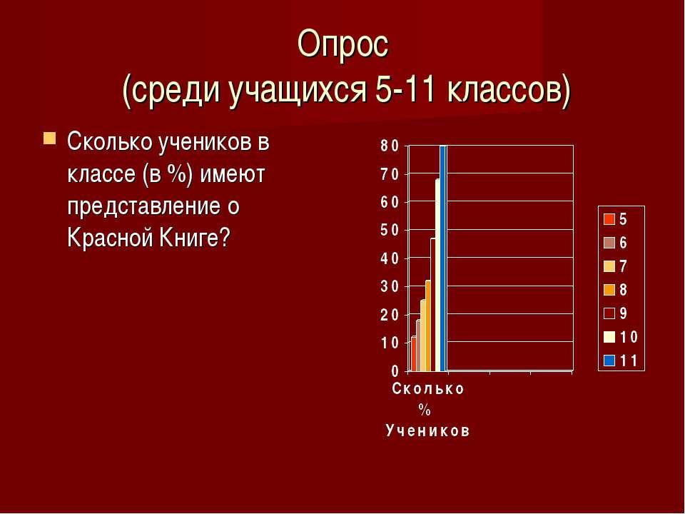 Опрос (среди учащихся 5-11 классов) Сколько учеников в классе (в %) имеют пре...
