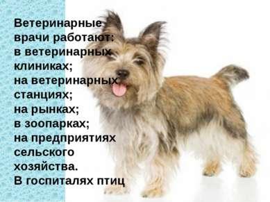 Ветеринарные врачи работают: в ветеринарных клиниках; на ветеринарных станция...