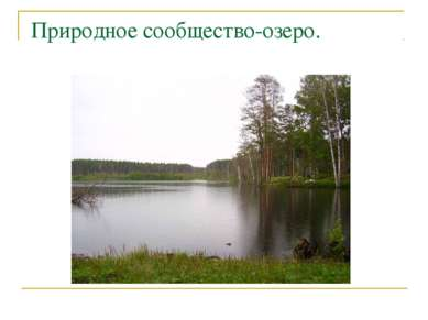 Природное сообщество-озеро.