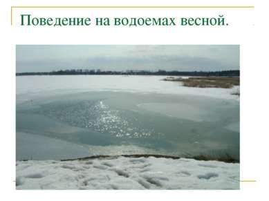 Поведение на водоемах весной.