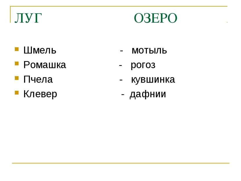 ЛУГ ОЗЕРО Шмель - мотыль Ромашка - рогоз Пчела - кувшинка Клевер - дафнии