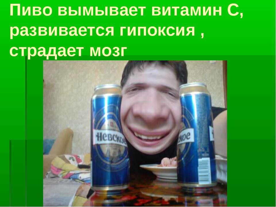 Пиво вымывает витамин С, развивается гипоксия , страдает мозг