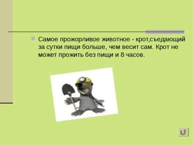 Самое прожорливое животное - крот,съедающий за сутки пищи больше, чем весит с...