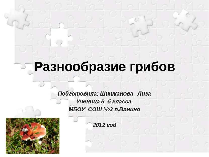 Разнообразие грибов Подготовила: Шишканова Лиза Ученица 5 б класса. МБОУ СОШ ...