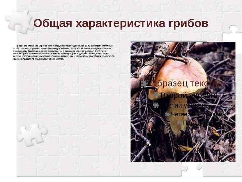 Общая характеристика грибов Грибы- это отдельное царство организмов, насчитыв...