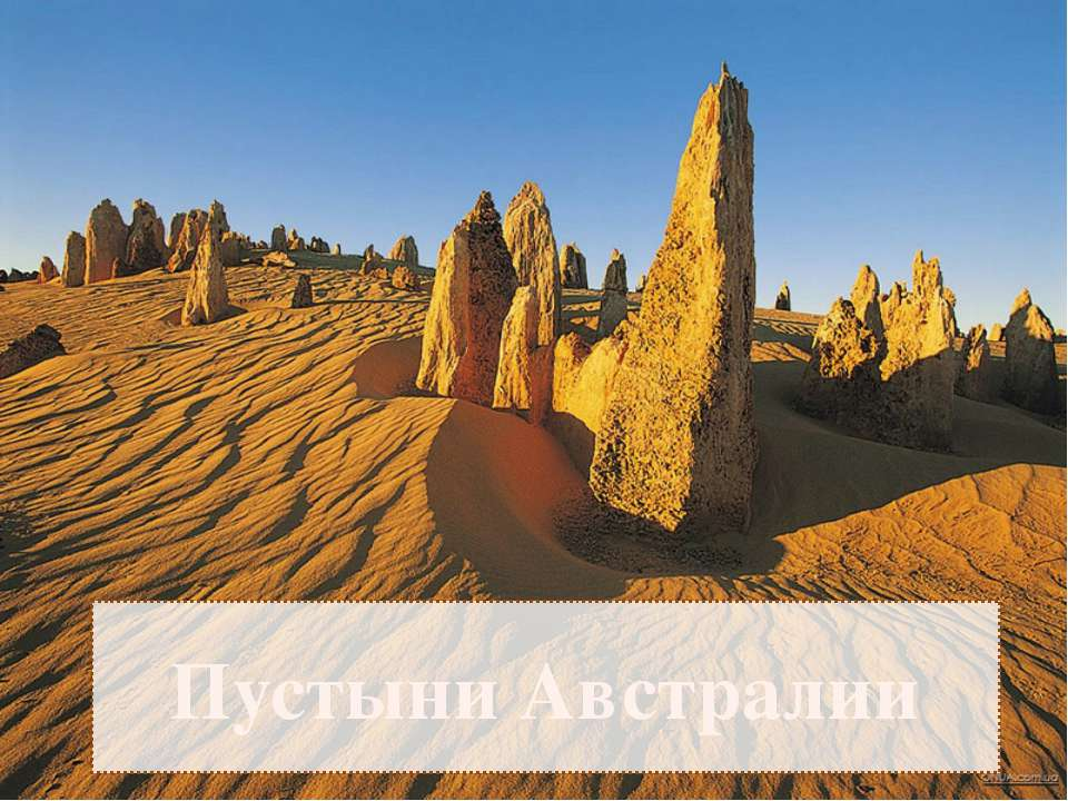 Пустыни Австралии