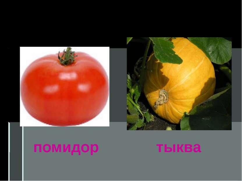 помидор тыква