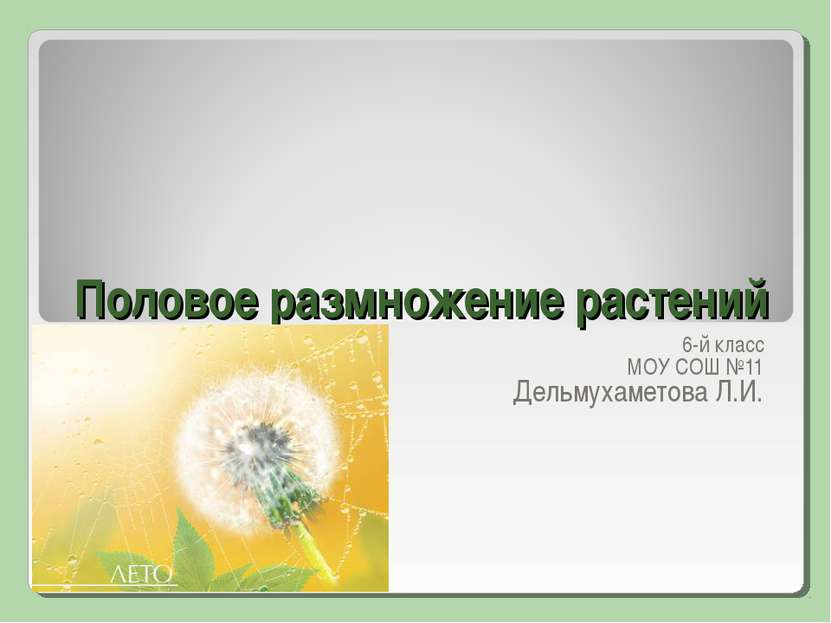 Половое размножение растений 6-й класс МОУ СОШ №11 Дельмухаметова Л.И.