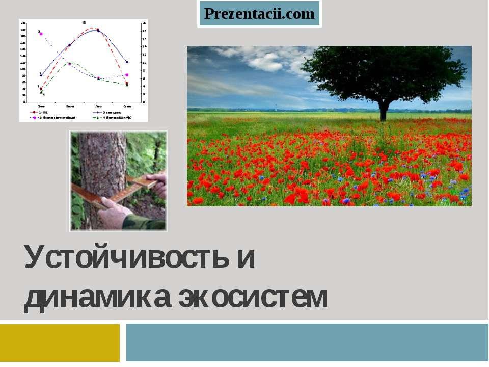 Устойчивость и динамика экосистем