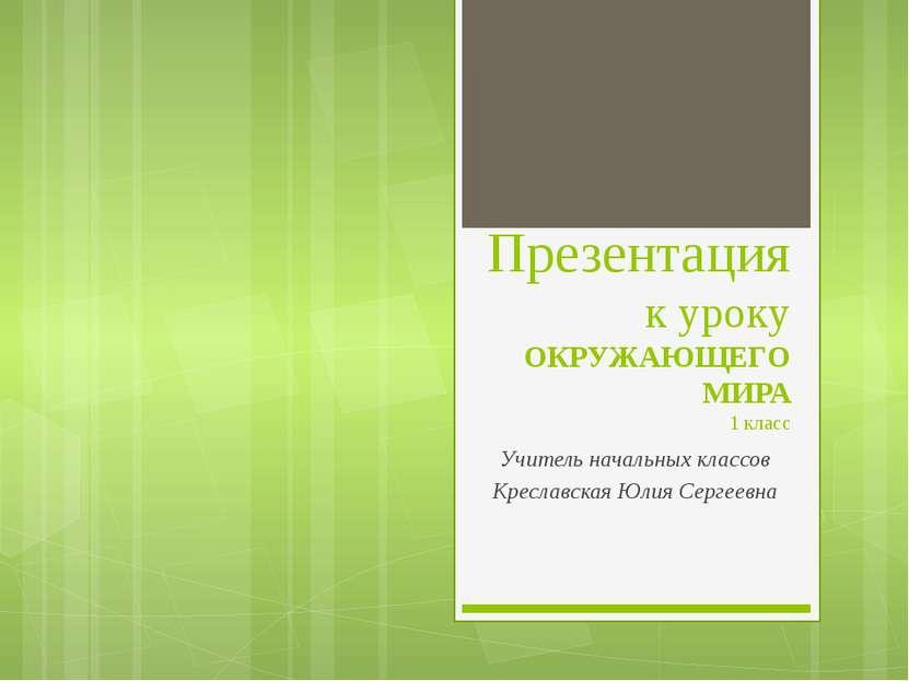 Презентация к уроку ОКРУЖАЮЩЕГО МИРА 1 класс Учитель начальных классов Кресла...