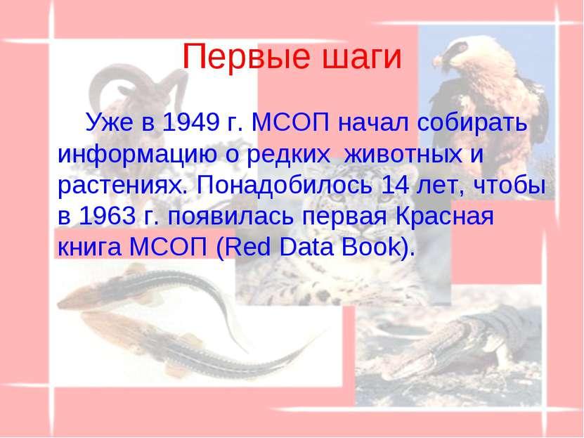 Первые шаги Уже в 1949 г. МСОП начал собирать информацию о редких животных и...