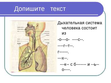 Допишите текст Дыхательная система человека состоит из -о---о- ----с--. ----г...