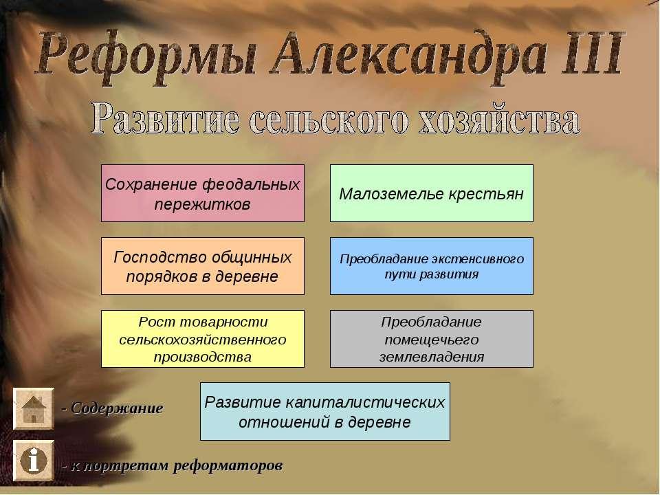 Сохранение феодальных пережитков Малоземелье крестьян Господство общинных пор...