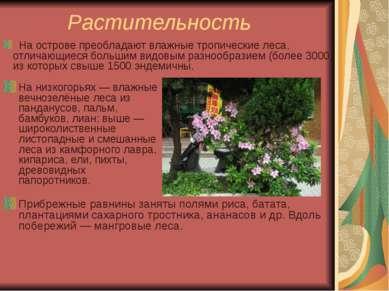 Растительность На низкогорьях — влажные вечнозелёные леса из панданусов, паль...