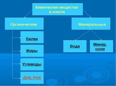 Химические вещества в клетке Органические Минеральные Белки Жиры Углеводы ДНК...
