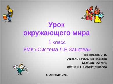 Урок окружающего мира 1 класс УМК «Система Л.В.Занкова» Терентьева С. И. учит...