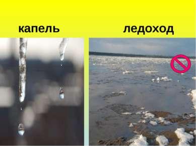 капель ледоход