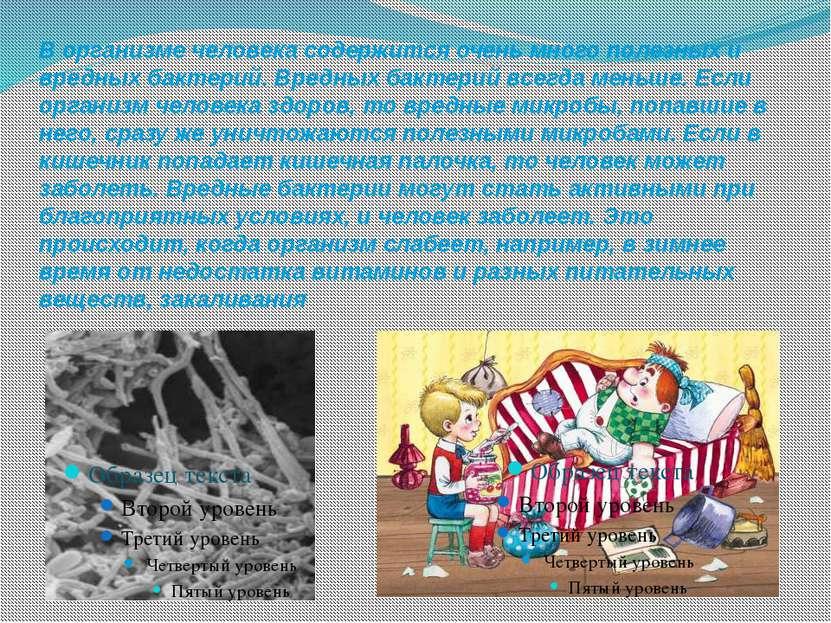В организме человека содержится очень много полезных и вредных бактерий. Вред...