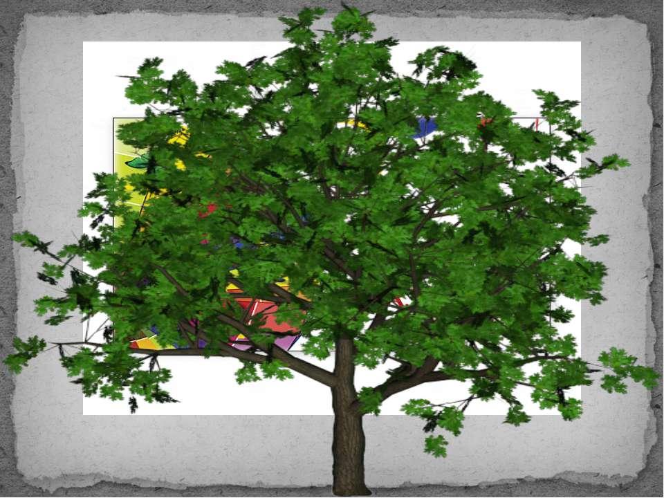 Лист бумаги и карандаш, стол и стул были когда-то деревьями в лесу.
