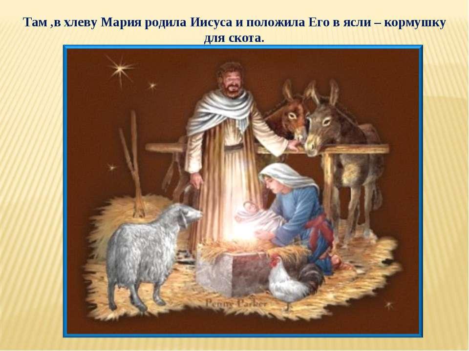 Там ,в хлеву Мария родила Иисуса и положила Его в ясли – кормушку для скота.