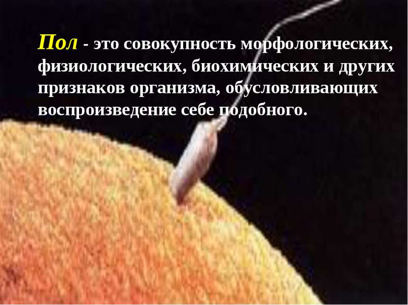 Пол - это совокупность морфологических, физиологических, биохимических и друг...