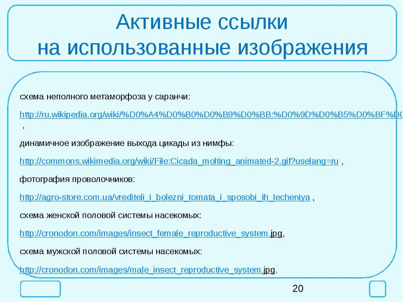 Активные ссылки на использованные изображения схема неполного метаморфоза у с...