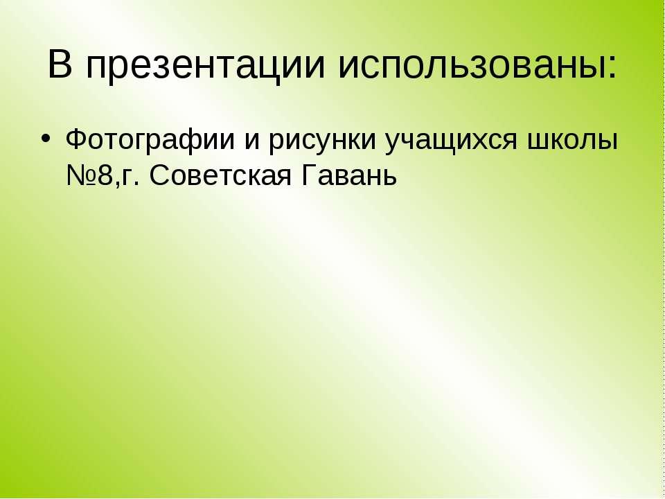 В презентации использованы: Фотографии и рисунки учащихся школы №8,г. Советск...