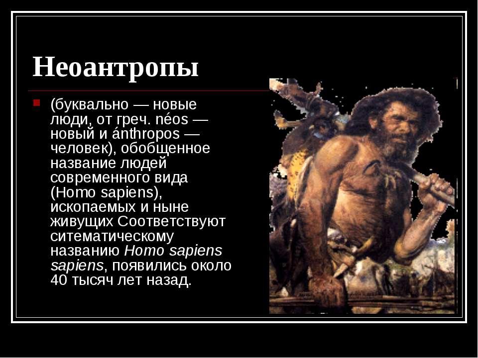 Неоантропы (буквально — новые люди, от греч. néos — новый и ánthropos — челов...