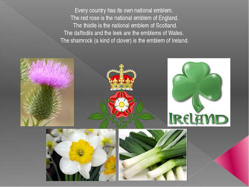 Every country has its own national emblem. The red rose is the national emble...